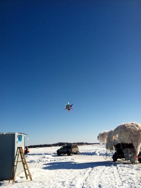 Kites and shanties and bears, oh my!
