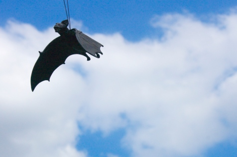 Fake bat (in place of scarecrow)