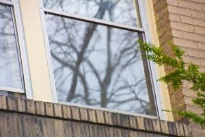 Window day