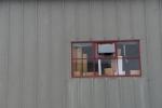Window, focused